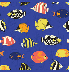 tropical reef fish seamless pattern vector image