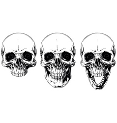 White graphic human skull with black eyes set vector