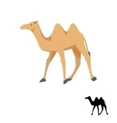 Camel silhouette on white vector