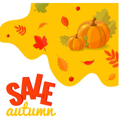 autumn sale discount banner with pumpkins and vector image