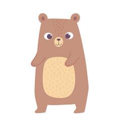 cute little bear animal cartoon isolated design vector image