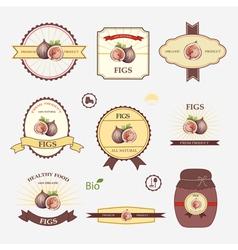 Figs set of label design vector
