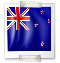 icon design for flag of new zealand vector image