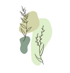 Modern plant elements background 1 vector