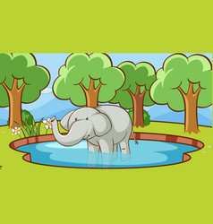 Scene with elephant in pond vector
