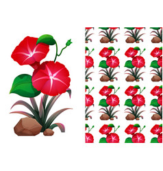 Seamless background design with red morning glory vector