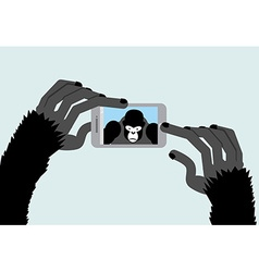 Selfie Monkey Black Gorilla photographs Animal and vector image