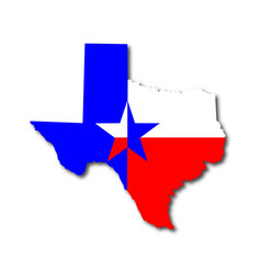 Texan background vector