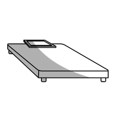 Weight scale device vector