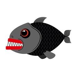 Piranha marine predator on white vector