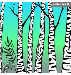 birch tree vector image