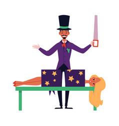 Cartoon magician sawing woman in half - magic vector