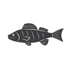 Fish silhouette isolated vector
