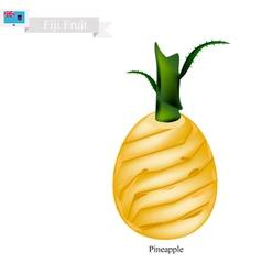 Fresh pineapple a famous fruit in fiji vector