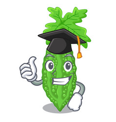 Graduation bitter melon gourd on shape cartoon vector