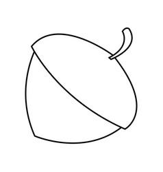 Hazelnut icon image vector