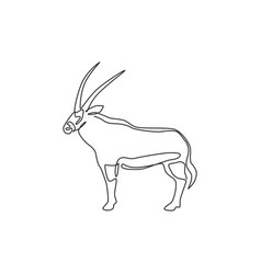 One continuous line drawing stout oryx vector
