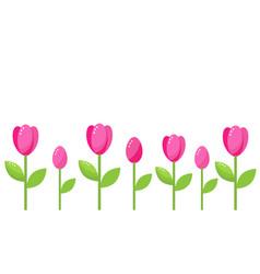 Tulip border vector