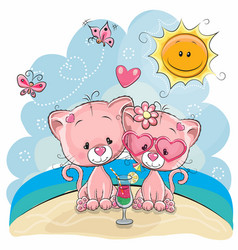 two kittens on the beach vector image