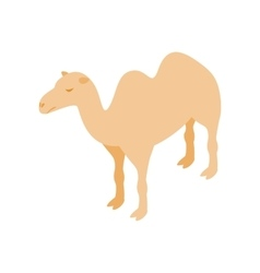 Camel icon isometric 3d style vector image vector image