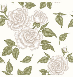 white rose flowers buds and leaves seamless vector image