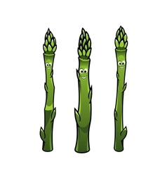 Happy smiling asparagus spears vector
