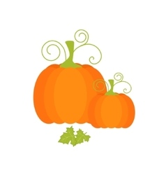 Pumpkin and leaves vector image