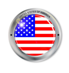 unites states of america button vector image