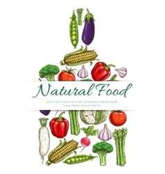 Natural vegetarian food symbol of vegetables icons vector image vector image