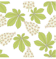 chestnut flower leaf seamless pattern vector image
