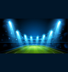 football arena vector image