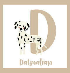 Letter d vocabulary standing dalmatian vector