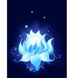 mysterious lotus vector image