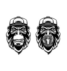 set of gorilla in baseball cap on white vector image