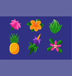 collection exotic tropical fruits flowers and vector image