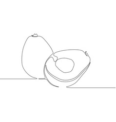 continuous line drawing avocado on white vector image