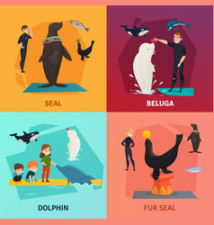 Dolphinarium show concept icons set vector