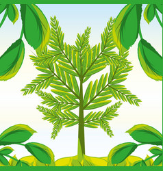 natural tree with leaves design vector image