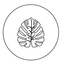 tropical leaf black icon outline in circle image vector image