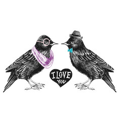 Valentines day card with couple of starlings vector