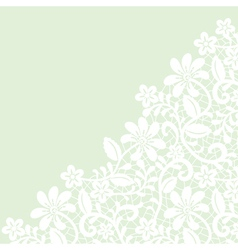 white guipure border on green background vector image
