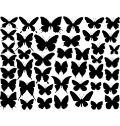 butterfly shapes vector image vector image