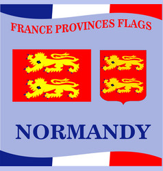 Flag french province normandy vector