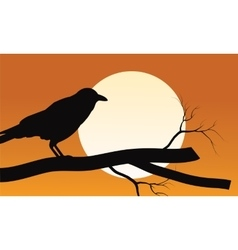 Halloween crow silhouette and moon backgrounds vector image