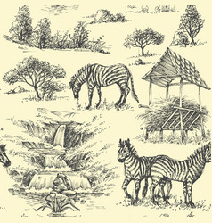 Nature seamless pattern zebra and wilderness vector