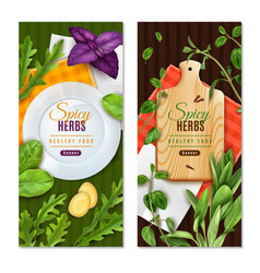 realistic herbs banners vector image