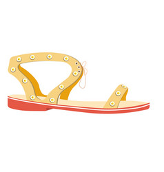 female summer sandal on flat sole isolated vector image vector image