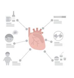 infographic of heart disease factor vector image