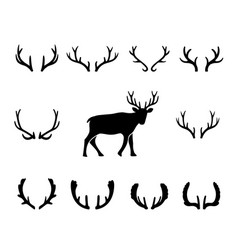 black silhouettes of different deer horns vector image