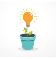 Growing idea - concept icon of education vector image vector image